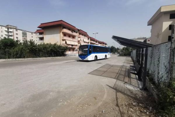 Palma Campania, la stazione dei bus è un punto di riferimento per i pendolari del territorio