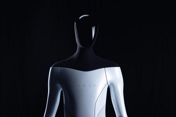 Tesla BOT: l'idea del robot domestico